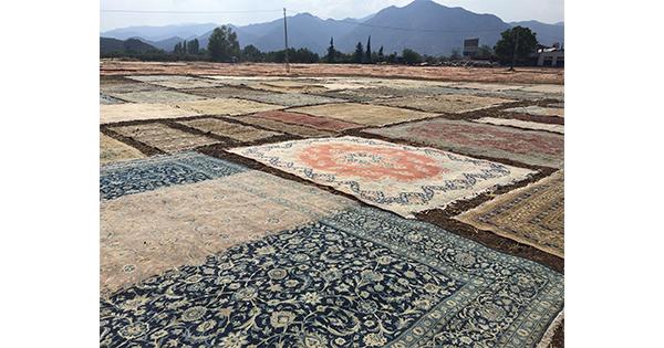 Türk'ün gül kokan tarihi; Isparta Halısı