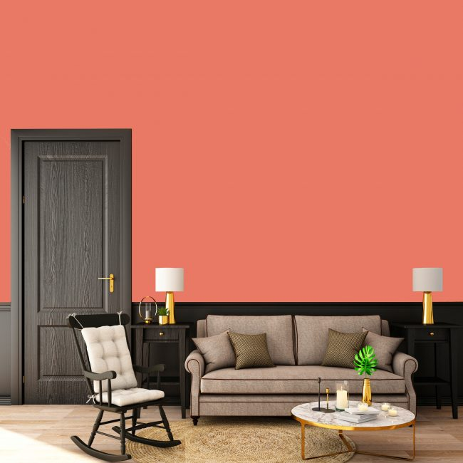 Catch the Trend Colors of the Year with San Deco!